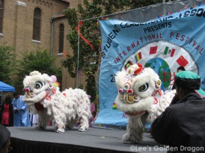 Houston Community College International Festival